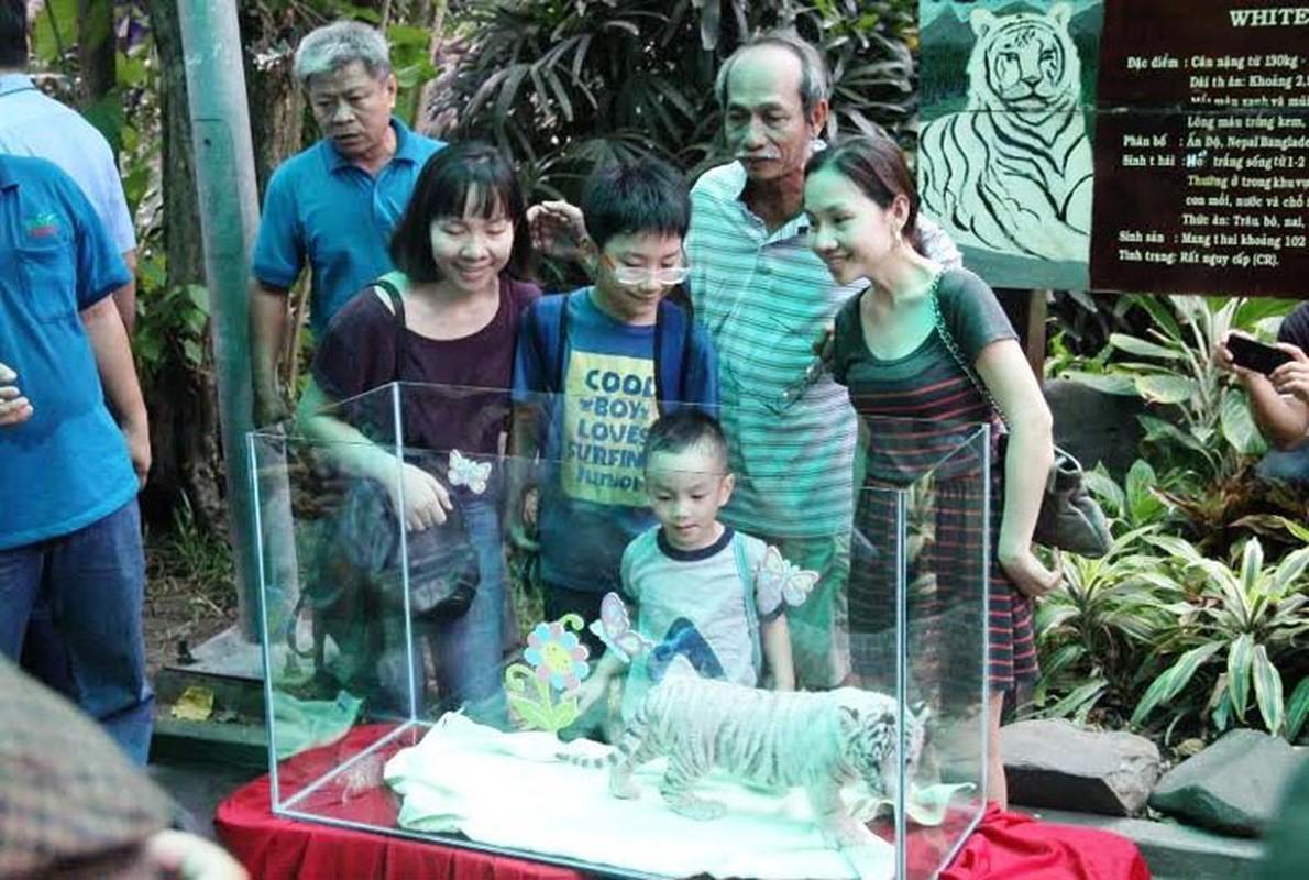 Nguoi Sai Gon hao huc du day thang 3 chu ho trang-Hinh-6