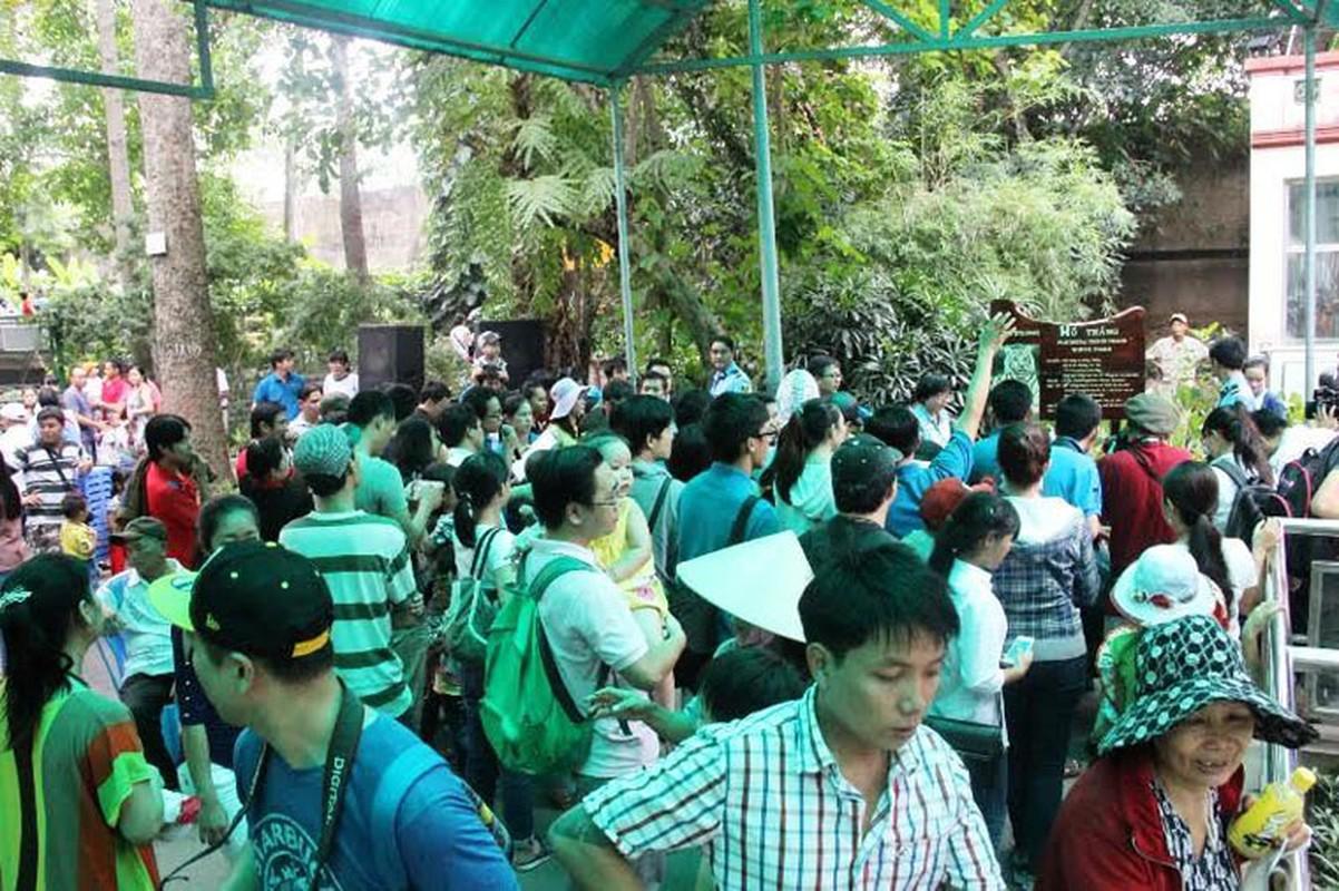Nguoi Sai Gon hao huc du day thang 3 chu ho trang-Hinh-9