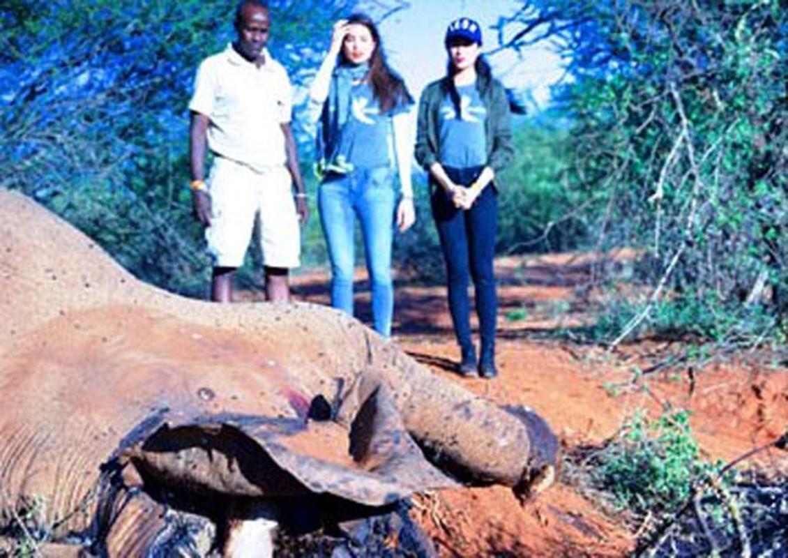 Pham Huong, Le Hang lang nguoi khi chung kien voi bi giet o Kenya-Hinh-2
