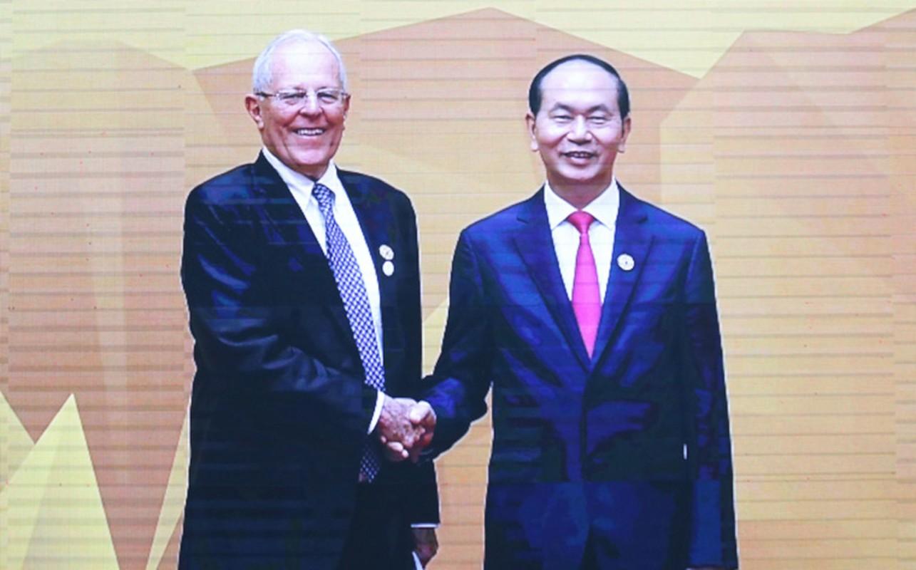 Chu tich nuoc don 20 lanh dao the gioi du su kien quan trong nhat APEC 2017-Hinh-13