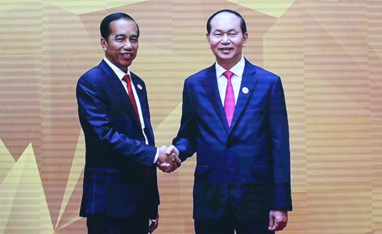 Chu tich nuoc don 20 lanh dao the gioi du su kien quan trong nhat APEC 2017-Hinh-17