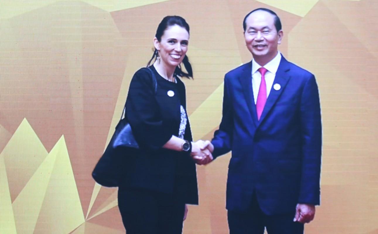 Chu tich nuoc don 20 lanh dao the gioi du su kien quan trong nhat APEC 2017-Hinh-20