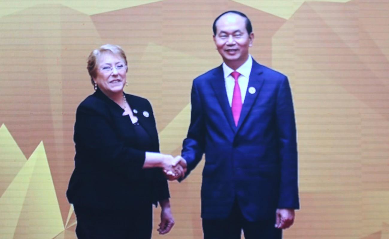 Chu tich nuoc don 20 lanh dao the gioi du su kien quan trong nhat APEC 2017-Hinh-21