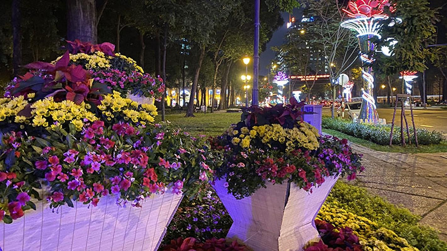 Canh long lay den hoa don chao 2020 o trung tam Sai Gon-Hinh-16
