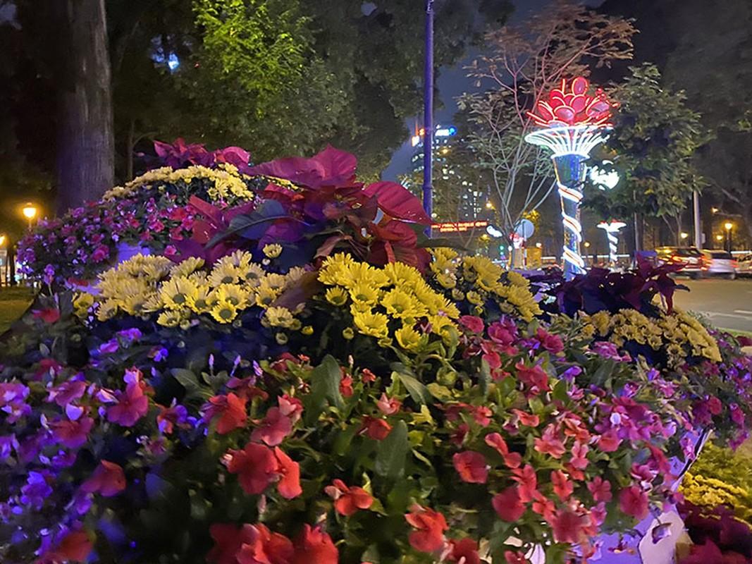Canh long lay den hoa don chao 2020 o trung tam Sai Gon-Hinh-17