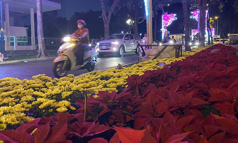 Canh long lay den hoa don chao 2020 o trung tam Sai Gon-Hinh-7