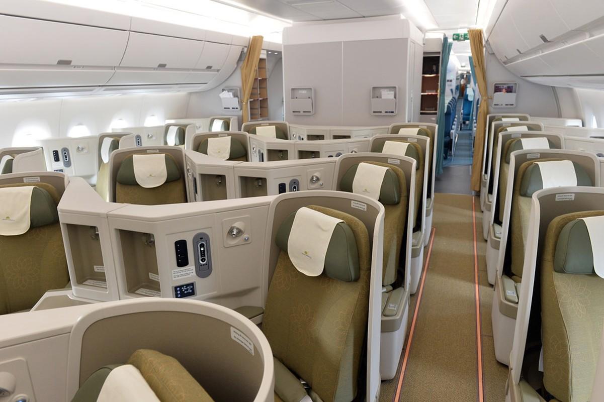 Can canh sieu may bay A350-900 thu 8 cua Vietnam Airlines-Hinh-3
