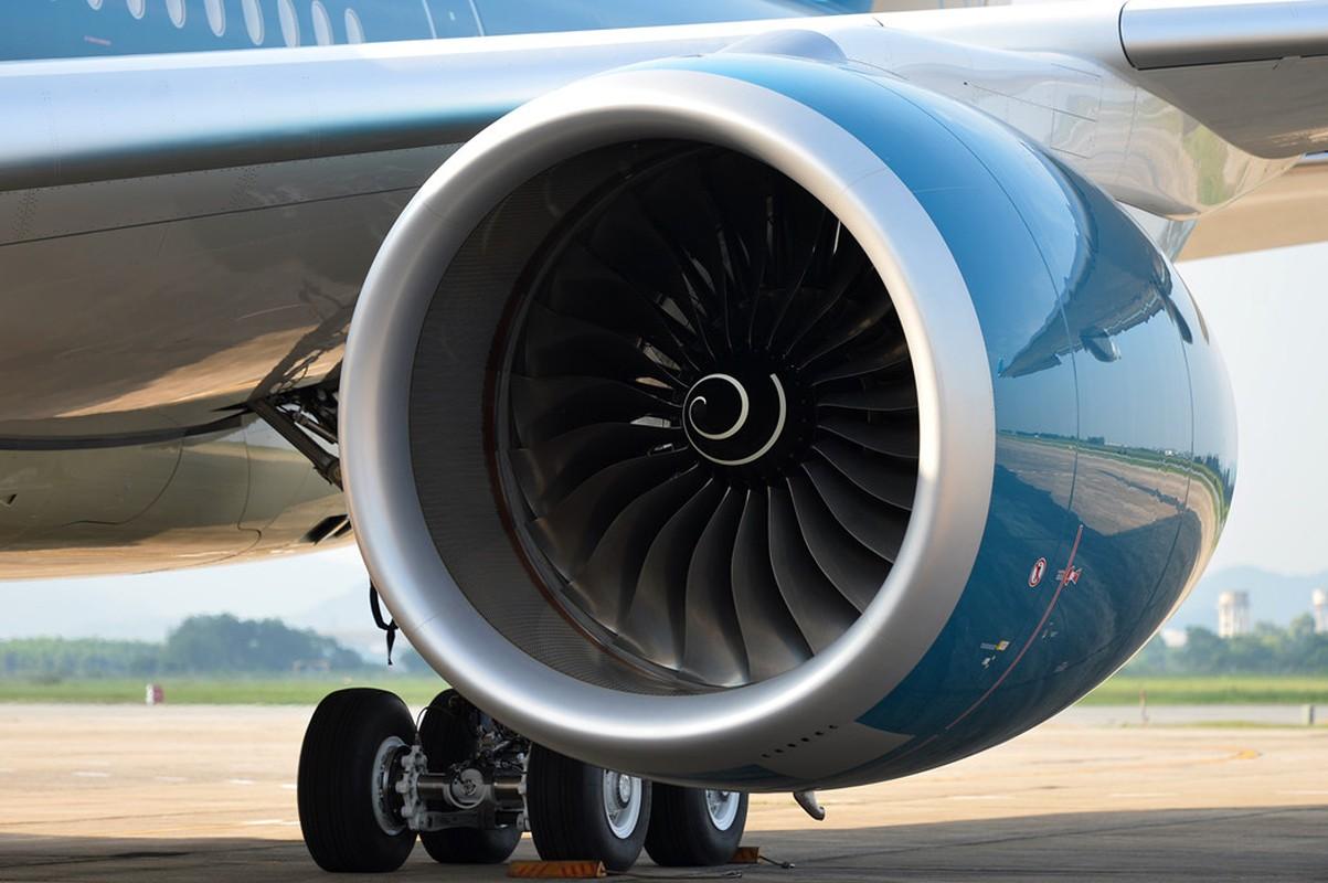 Can canh sieu may bay A350-900 thu 8 cua Vietnam Airlines-Hinh-6