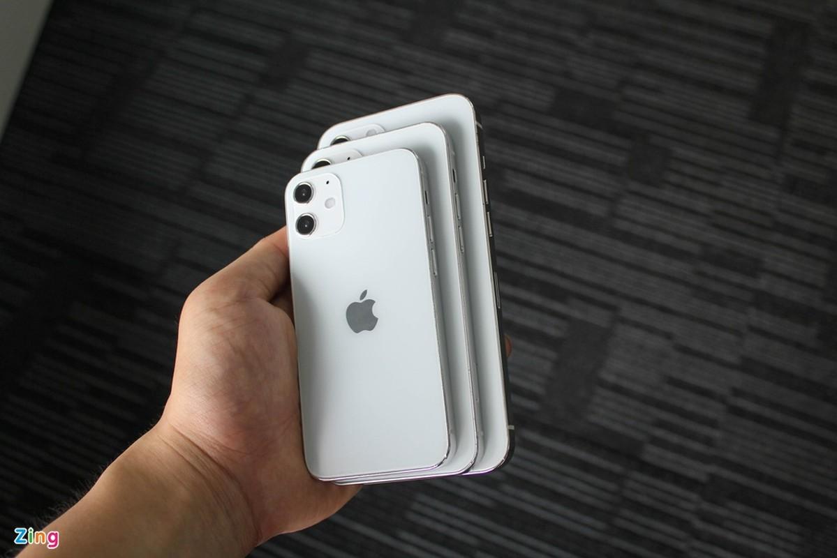 Top 4 mo hinh iPhone 12 xuat hien o Viet Nam-Hinh-3
