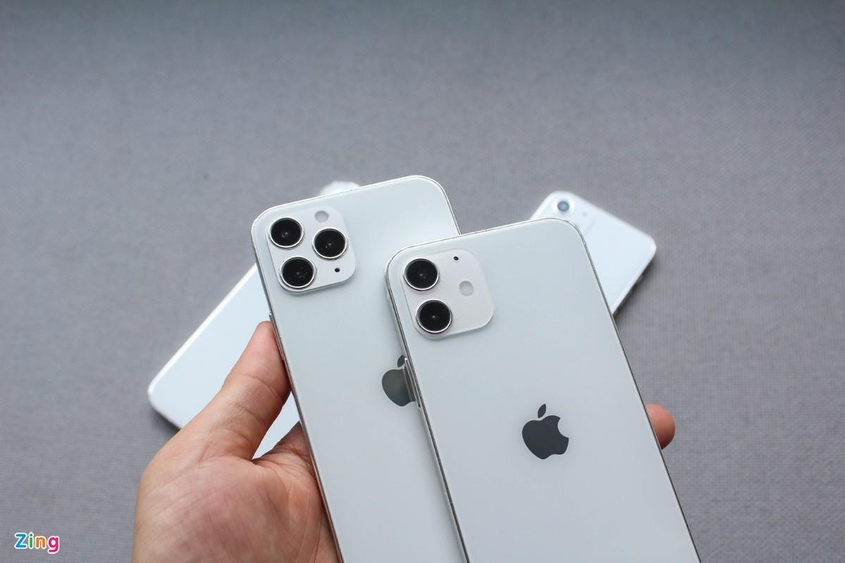 Top 4 mo hinh iPhone 12 xuat hien o Viet Nam-Hinh-5
