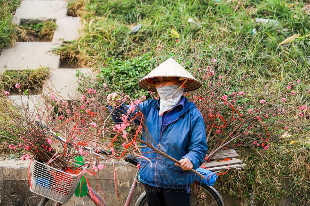Cho hoa lon nhat Ha Noi nhon nhip truoc them Tet Nguyen dan 2021-Hinh-11