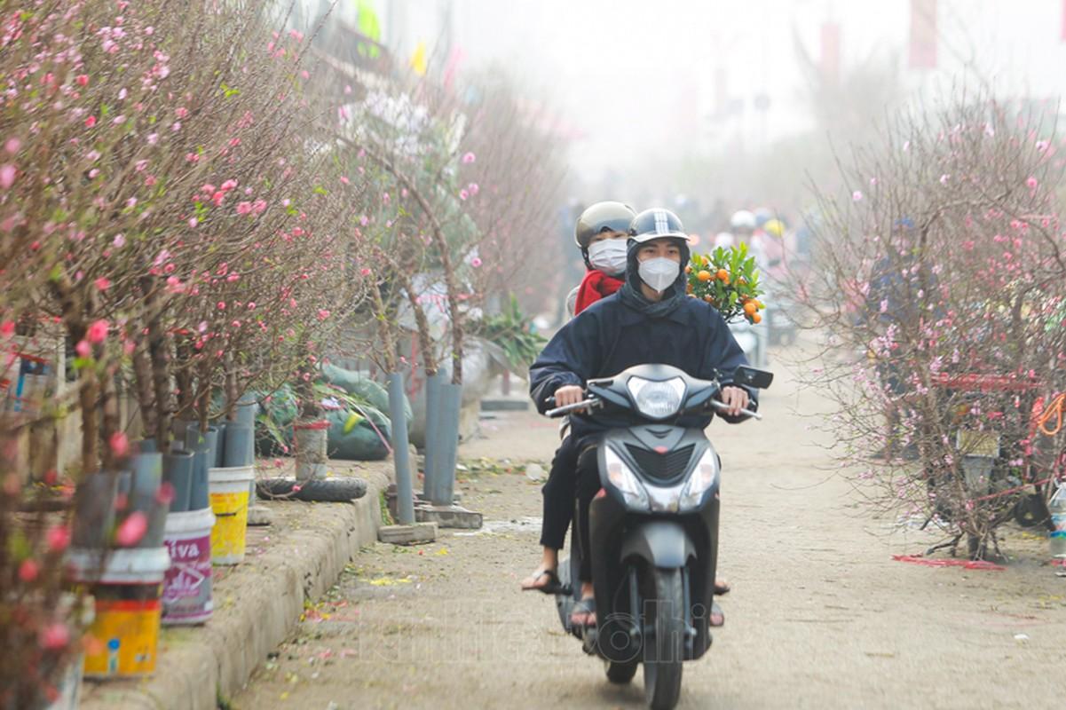 Cho hoa lon nhat Ha Noi nhon nhip truoc them Tet Nguyen dan 2021-Hinh-4