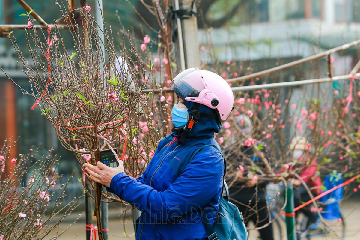 Cho hoa lon nhat Ha Noi nhon nhip truoc them Tet Nguyen dan 2021-Hinh-5