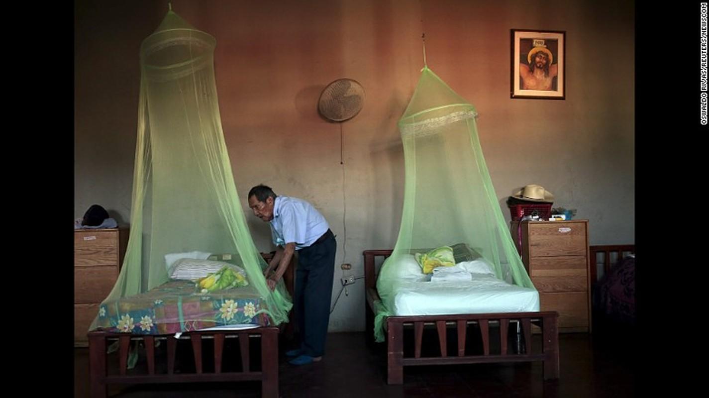 Ly do virus Zika nguy hiem voi dan ong hon phu nu-Hinh-4