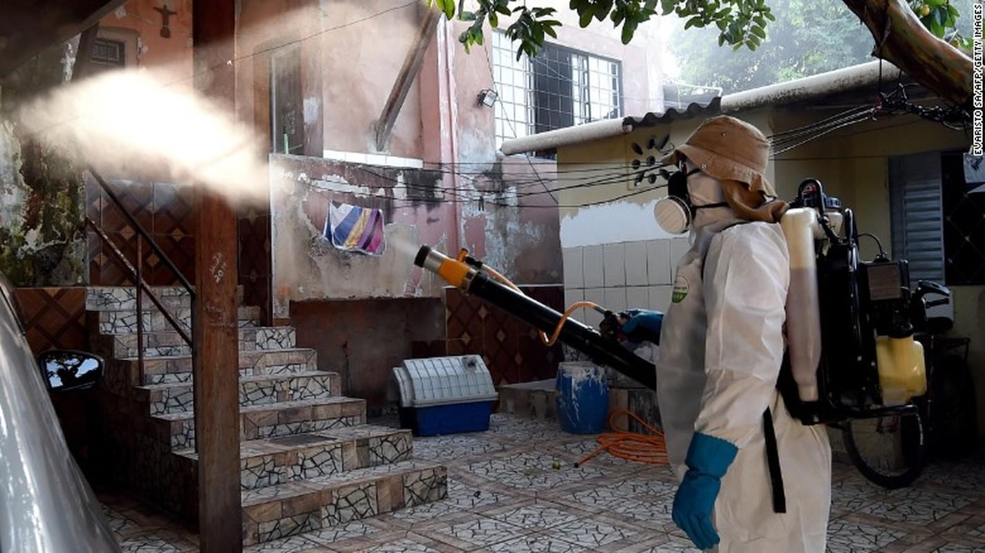 Ly do virus Zika nguy hiem voi dan ong hon phu nu