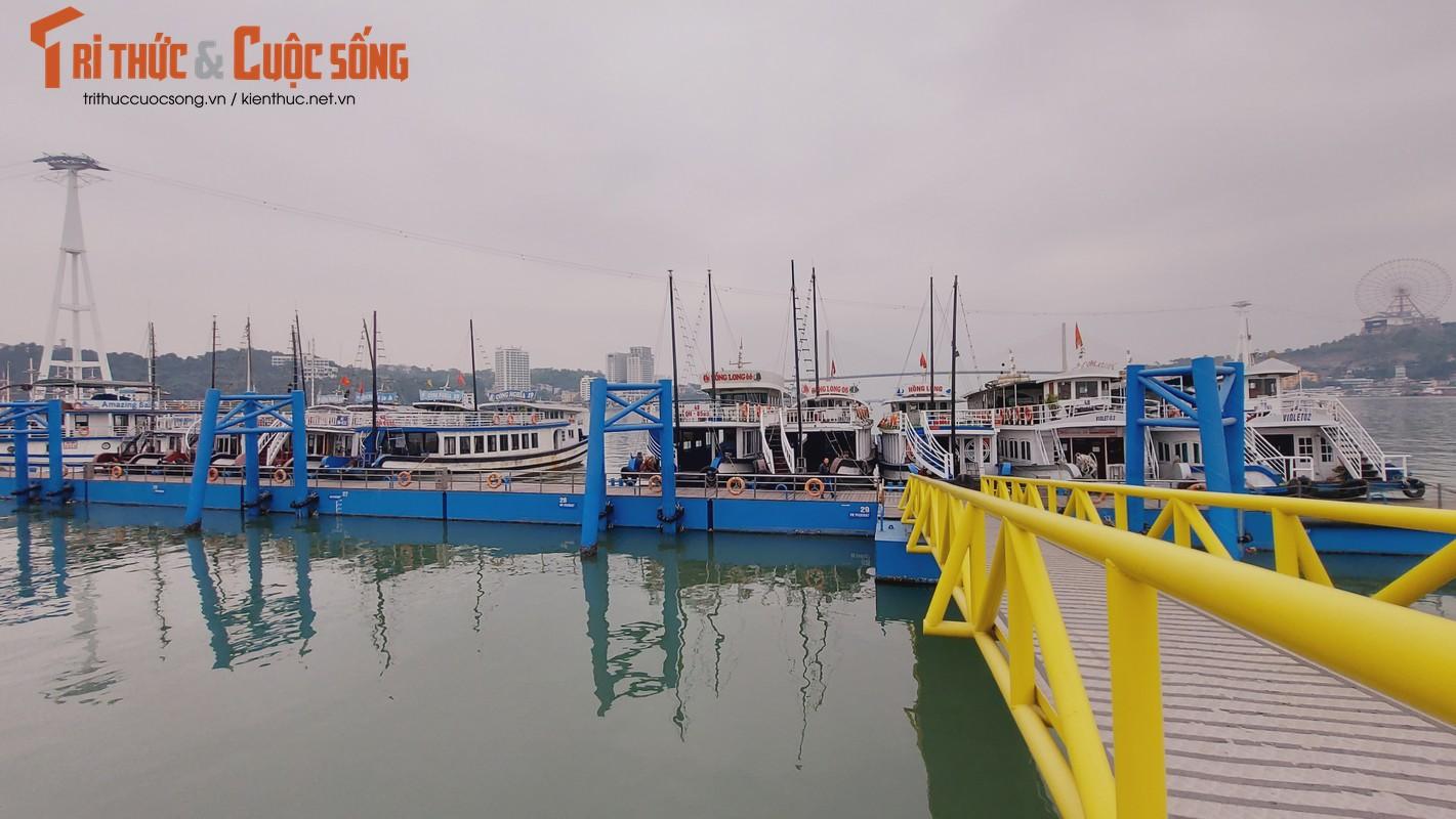 Quang Ninh: Ben cang diu hiu, tau thuyen nam im 1 cho mua COVID-19-Hinh-2