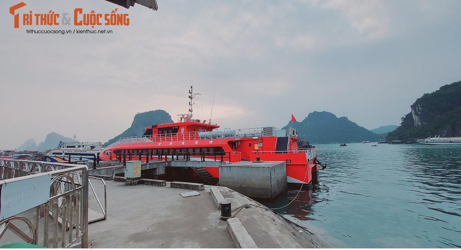 Quang Ninh: Ben cang diu hiu, tau thuyen nam im 1 cho mua COVID-19-Hinh-4