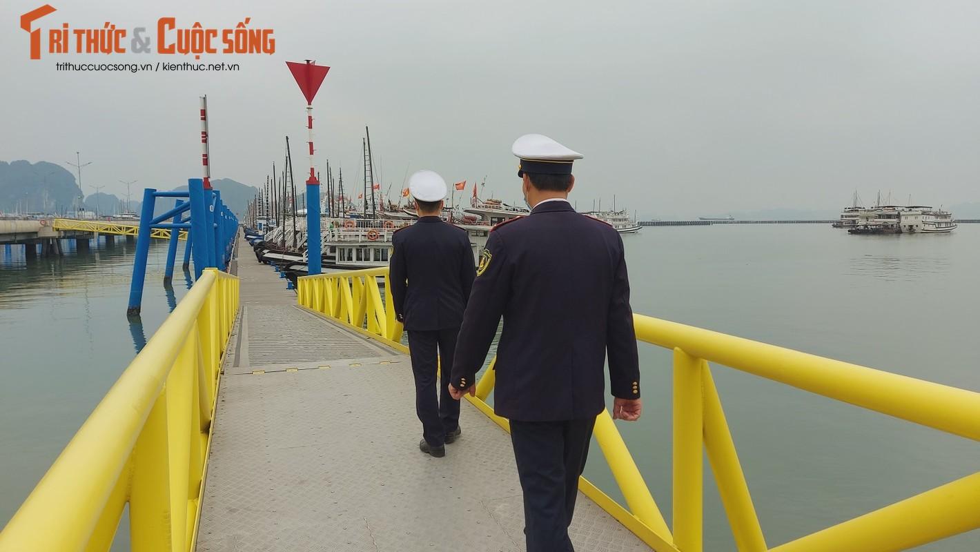 Quang Ninh: Ben cang diu hiu, tau thuyen nam im 1 cho mua COVID-19-Hinh-5