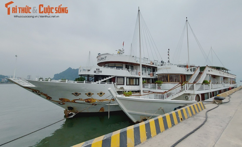 Quang Ninh: Ben cang diu hiu, tau thuyen nam im 1 cho mua COVID-19-Hinh-7