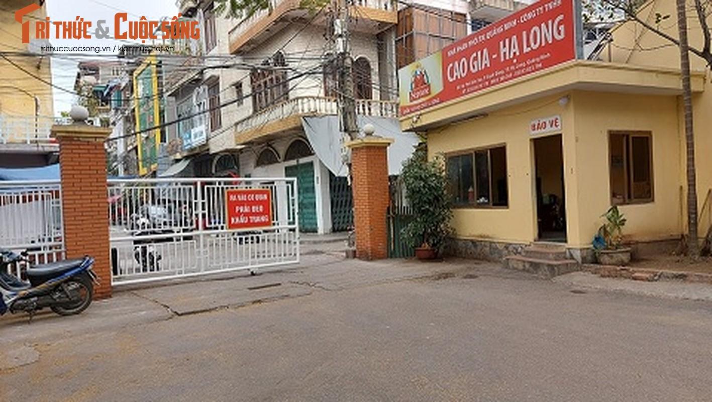 Quang Ninh: Ben cang diu hiu, tau thuyen nam im 1 cho mua COVID-19-Hinh-8