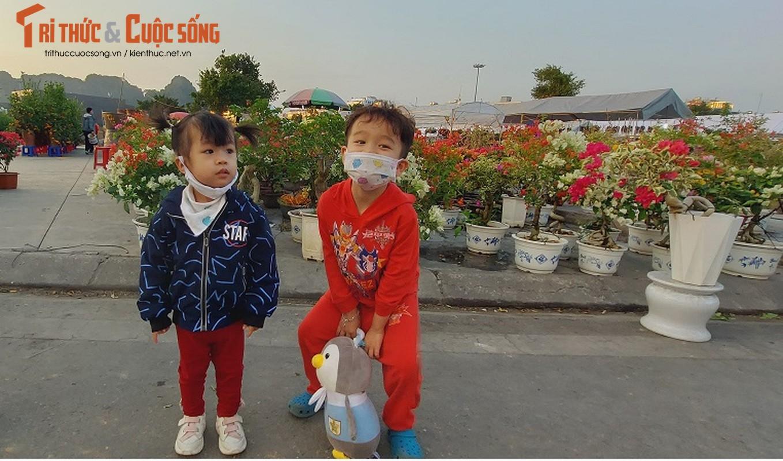 Nguoi dan Quang Ninh ngam hoa Xuan, tam quen met moi vi COVID-19-Hinh-6