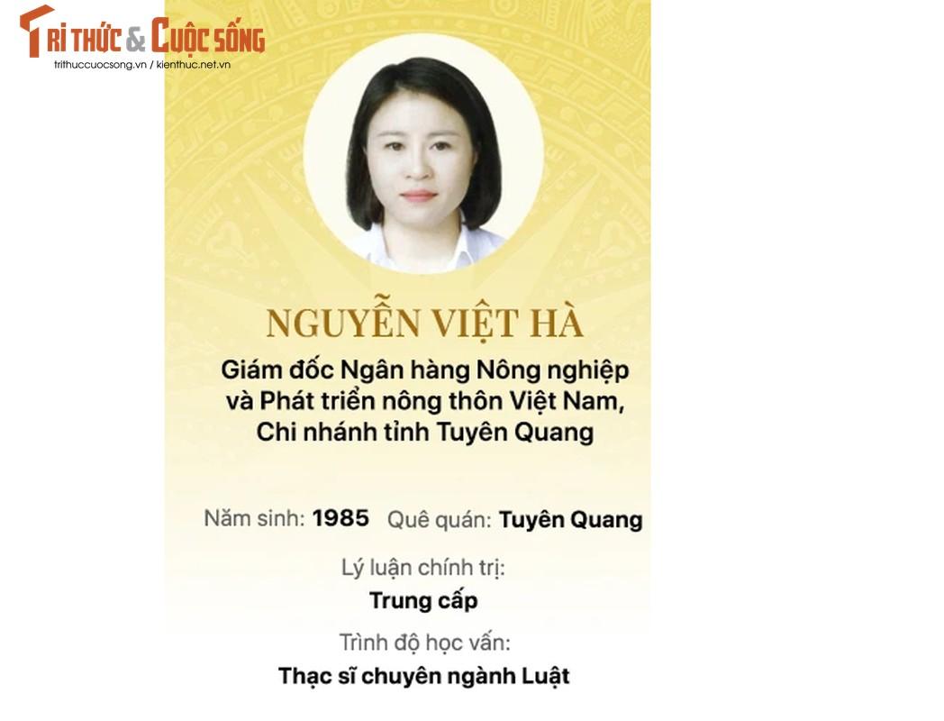 Chan dung 15 doanh nhan trung cu Dai bieu Quoc hoi khoa 15-Hinh-10