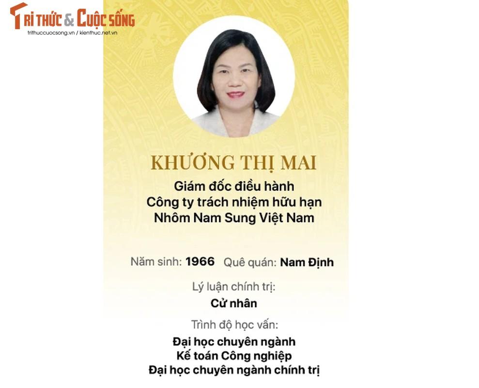 Chan dung 15 doanh nhan trung cu Dai bieu Quoc hoi khoa 15-Hinh-12