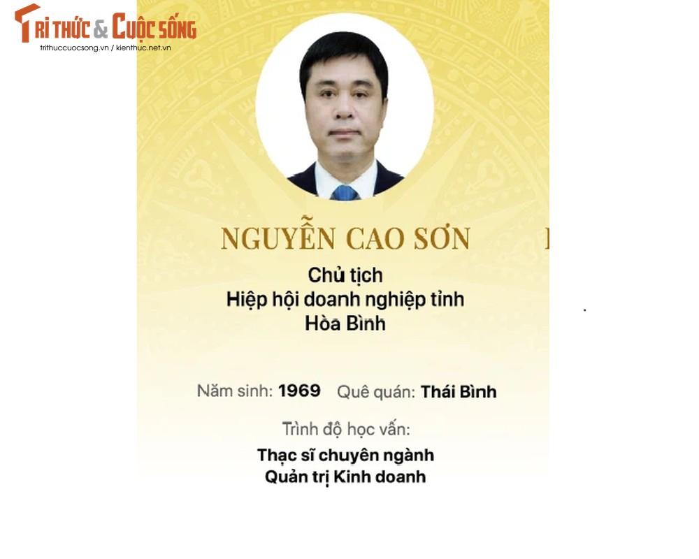 Chan dung 15 doanh nhan trung cu Dai bieu Quoc hoi khoa 15-Hinh-15