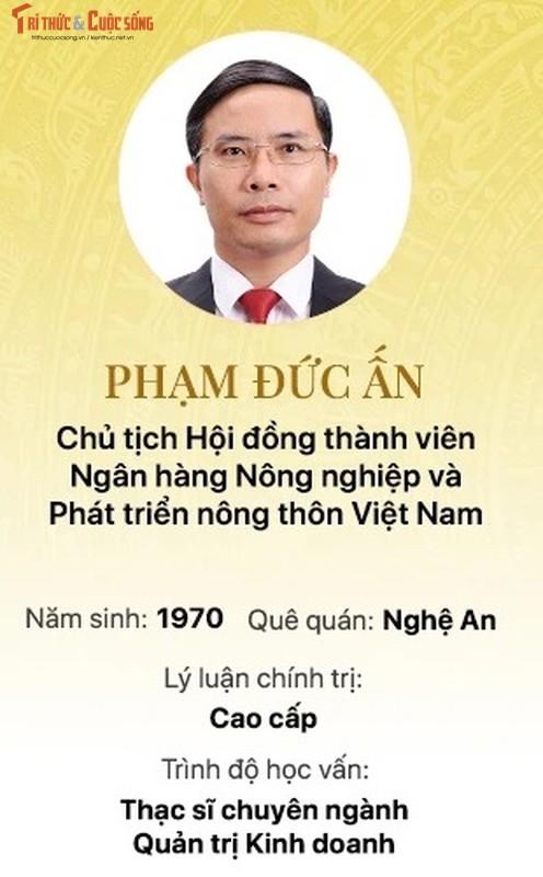 Chan dung 15 doanh nhan trung cu Dai bieu Quoc hoi khoa 15-Hinh-2
