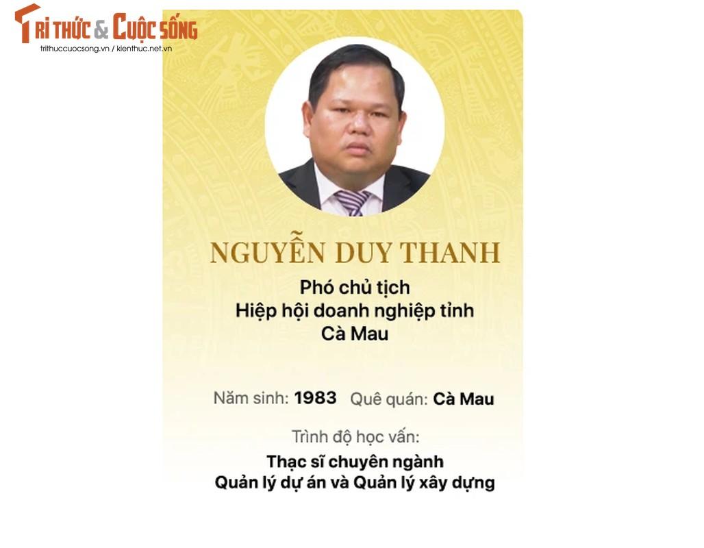 Chan dung 15 doanh nhan trung cu Dai bieu Quoc hoi khoa 15-Hinh-3