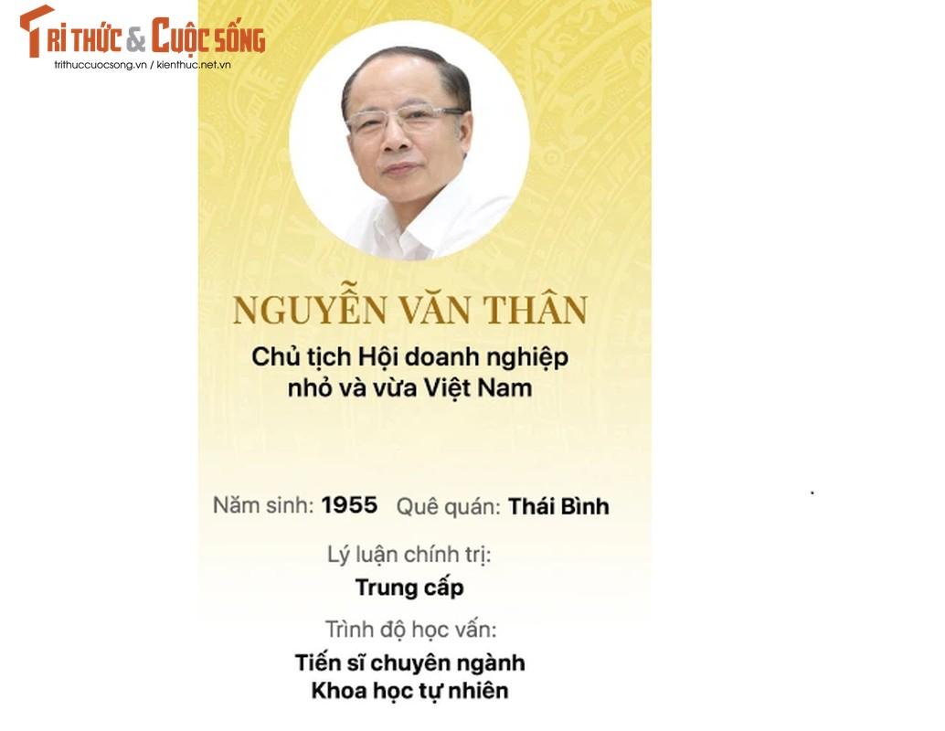Chan dung 15 doanh nhan trung cu Dai bieu Quoc hoi khoa 15-Hinh-6