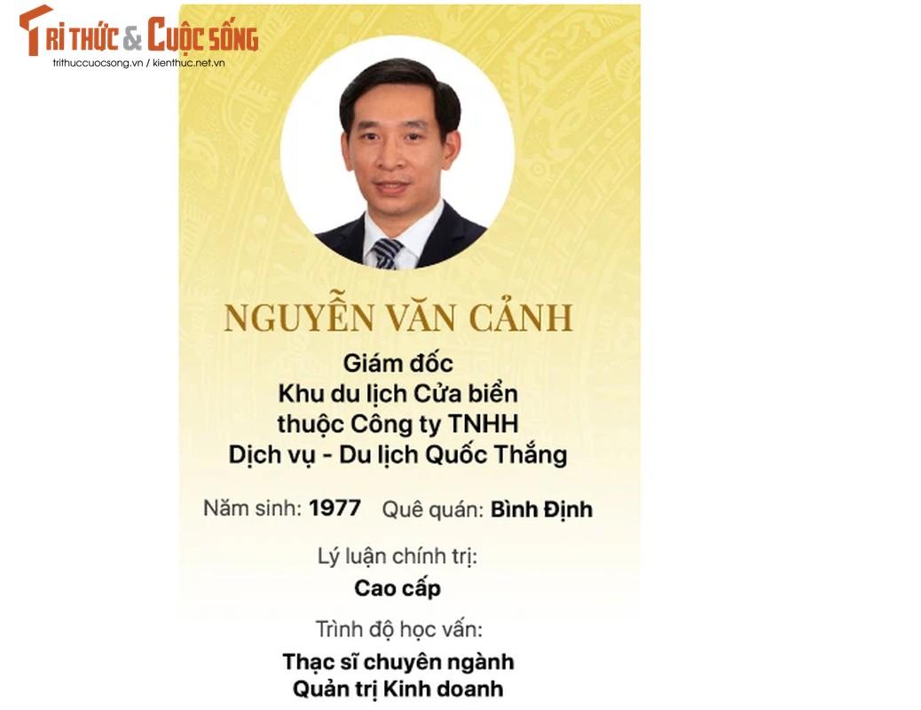 Chan dung 15 doanh nhan trung cu Dai bieu Quoc hoi khoa 15-Hinh-7