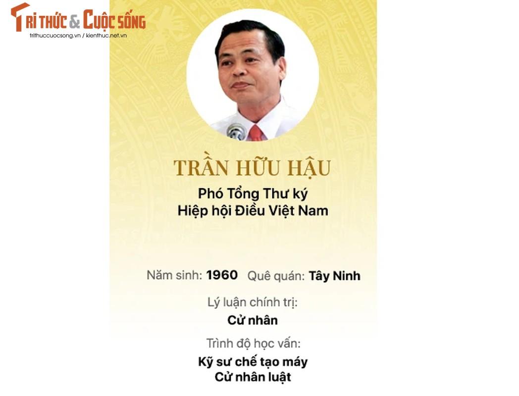 Chan dung 15 doanh nhan trung cu Dai bieu Quoc hoi khoa 15-Hinh-8