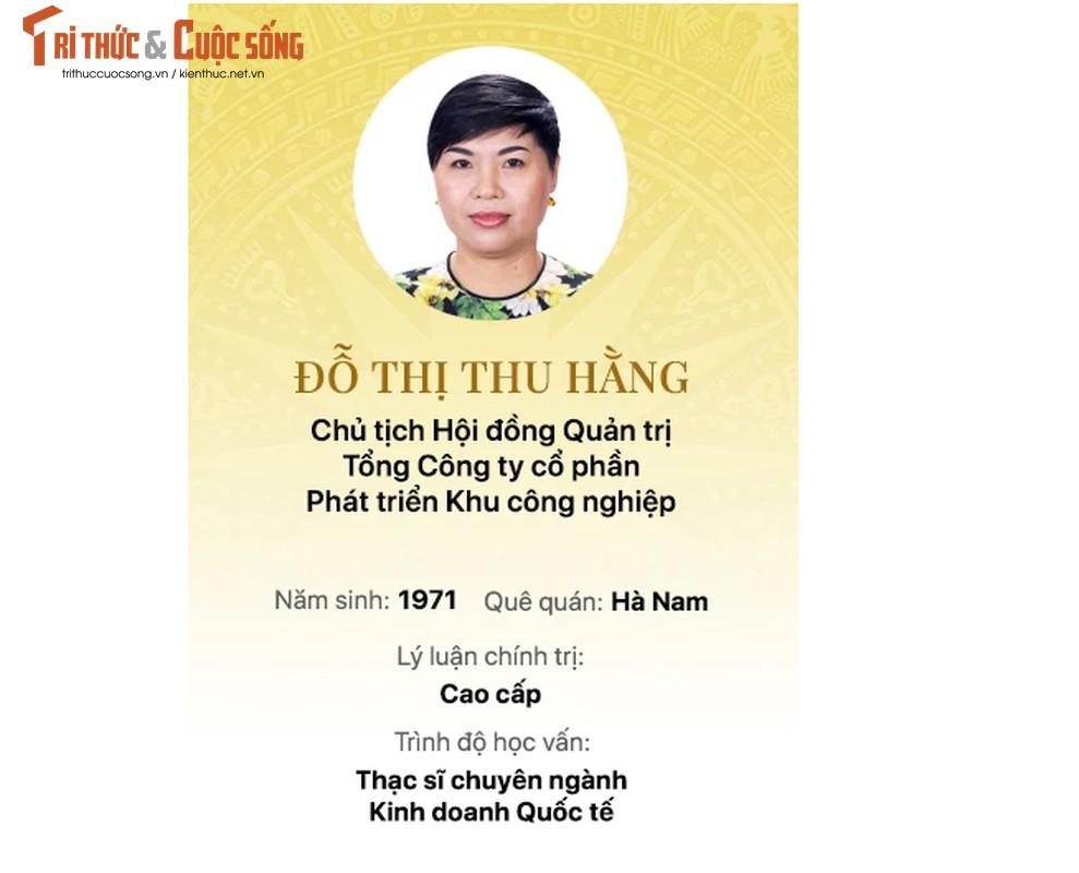 Chan dung 15 doanh nhan trung cu Dai bieu Quoc hoi khoa 15-Hinh-9