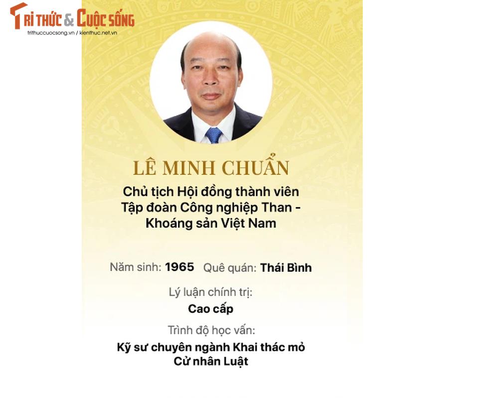 Chan dung 15 doanh nhan trung cu Dai bieu Quoc hoi khoa 15