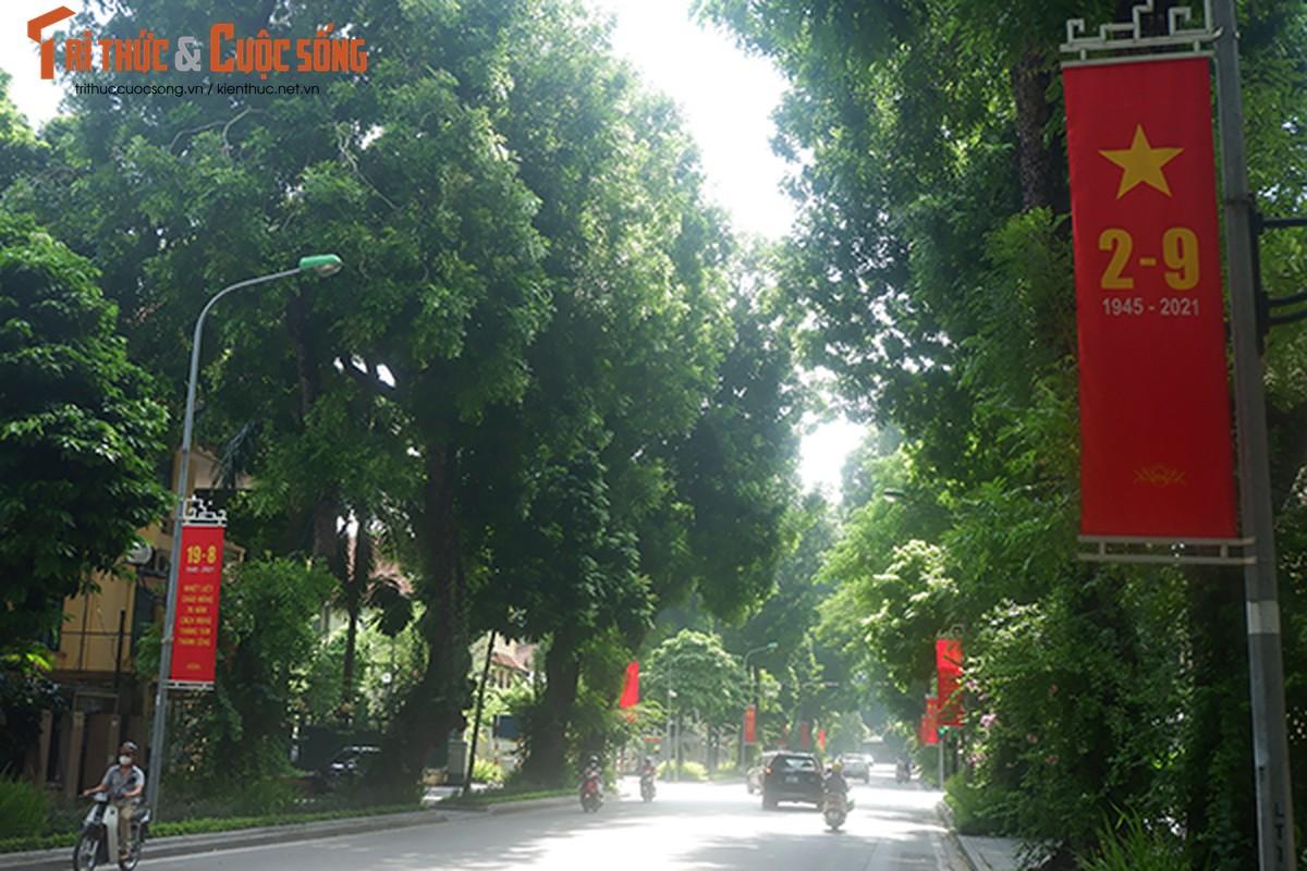 Pho phuong Ha Noi ruc ro co hoa chao mung Quoc khanh 2/9-Hinh-9
