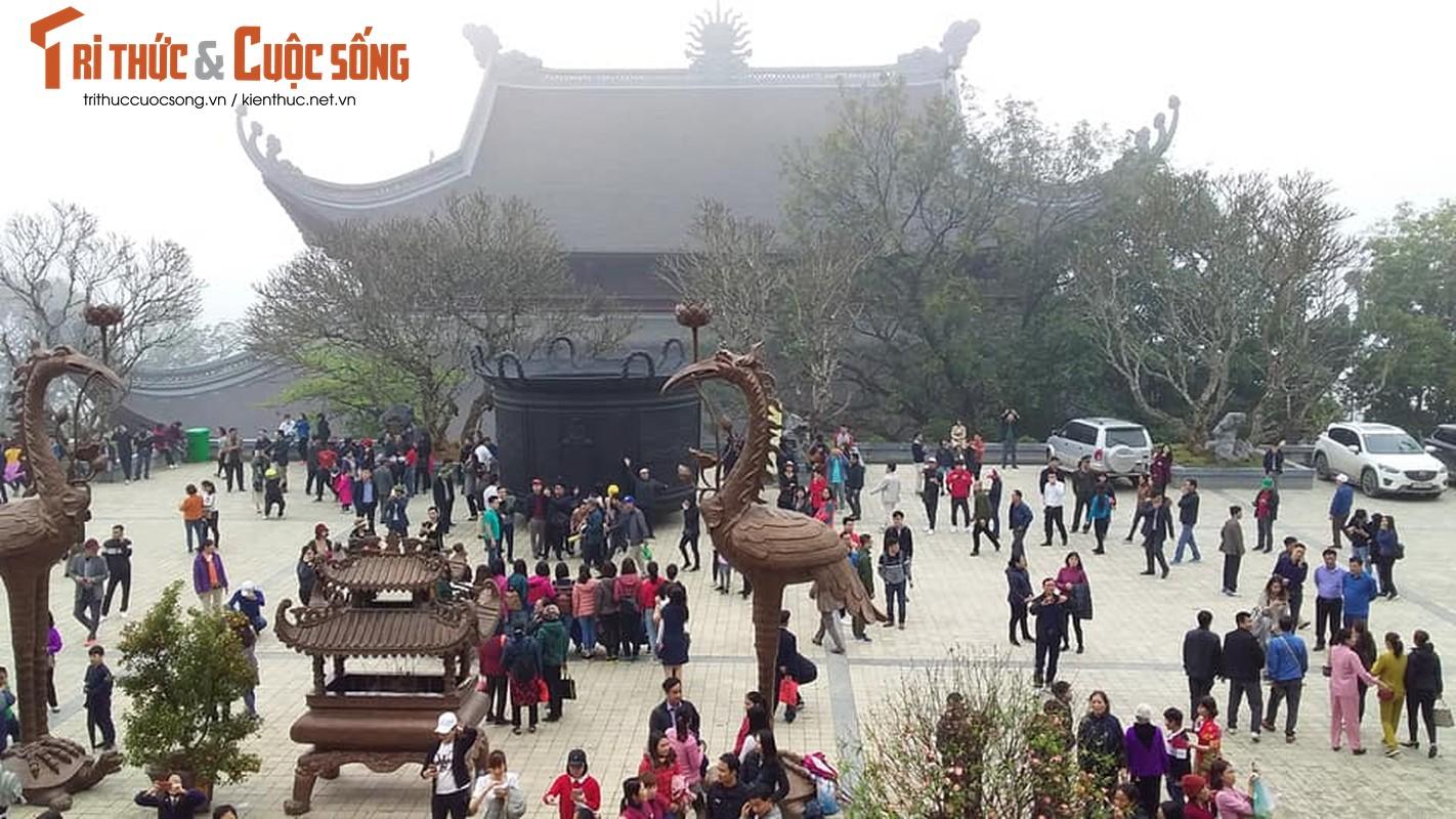 Canh ngon ngang trong chua lon nhat the gioi cua dai gia Van Truong-Hinh-30