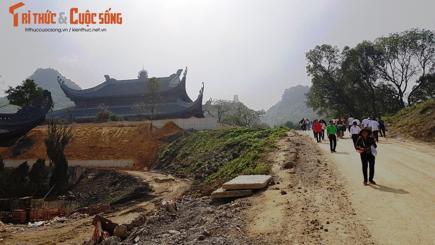 Canh ngon ngang trong chua lon nhat the gioi cua dai gia Van Truong-Hinh-22