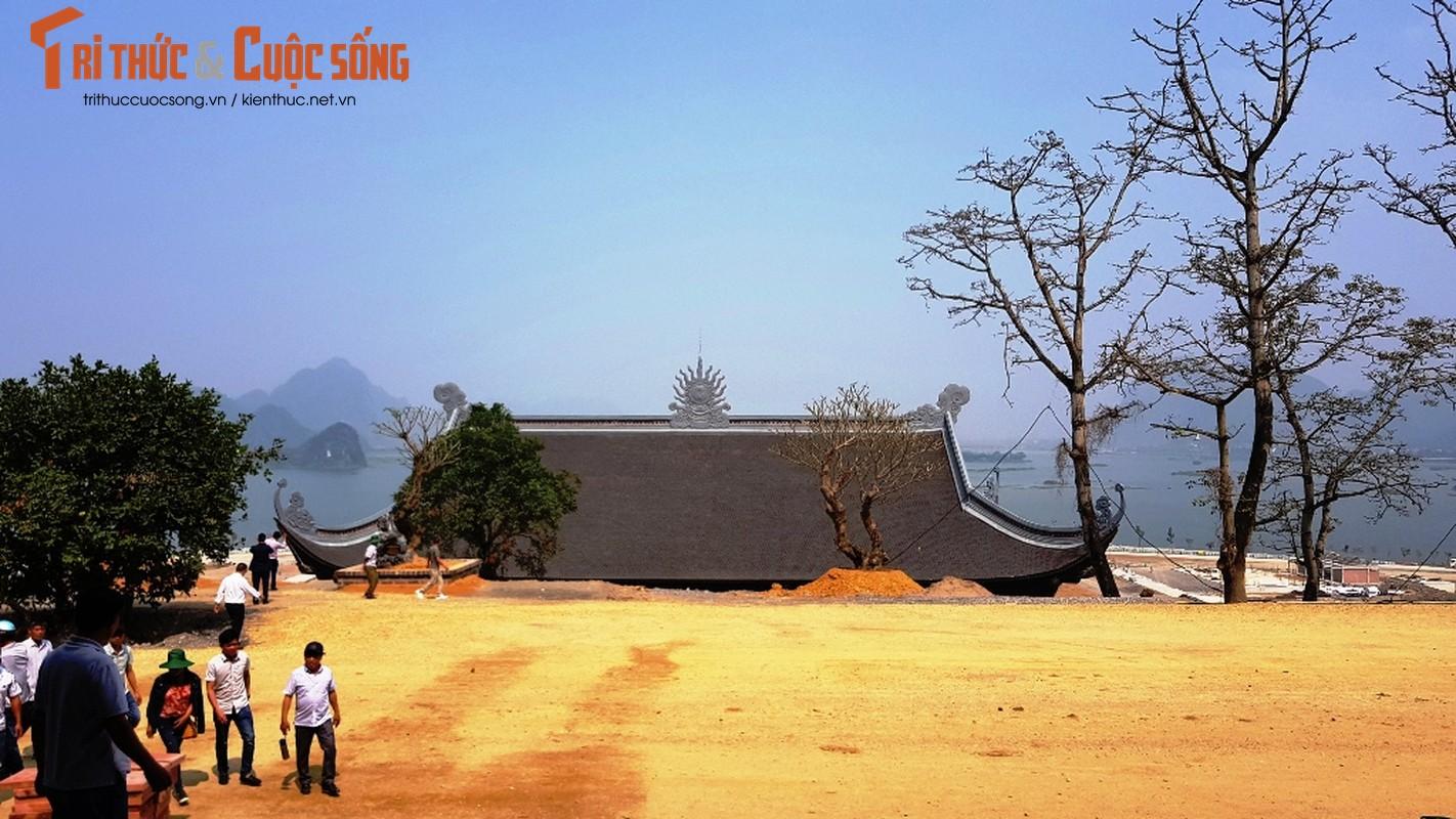Canh ngon ngang trong chua lon nhat the gioi cua dai gia Van Truong-Hinh-23