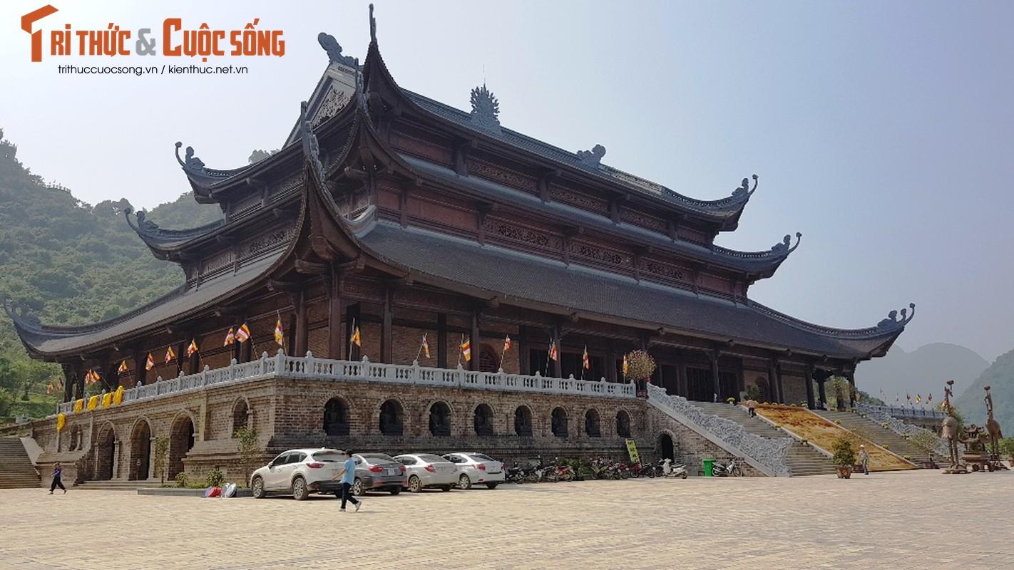 Canh ngon ngang trong chua lon nhat the gioi cua dai gia Van Truong-Hinh-27