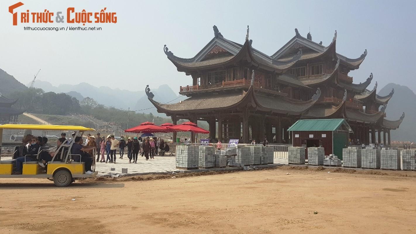Canh ngon ngang trong chua lon nhat the gioi cua dai gia Van Truong-Hinh-4
