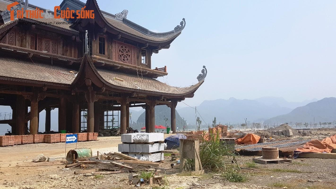 Canh ngon ngang trong chua lon nhat the gioi cua dai gia Van Truong-Hinh-7