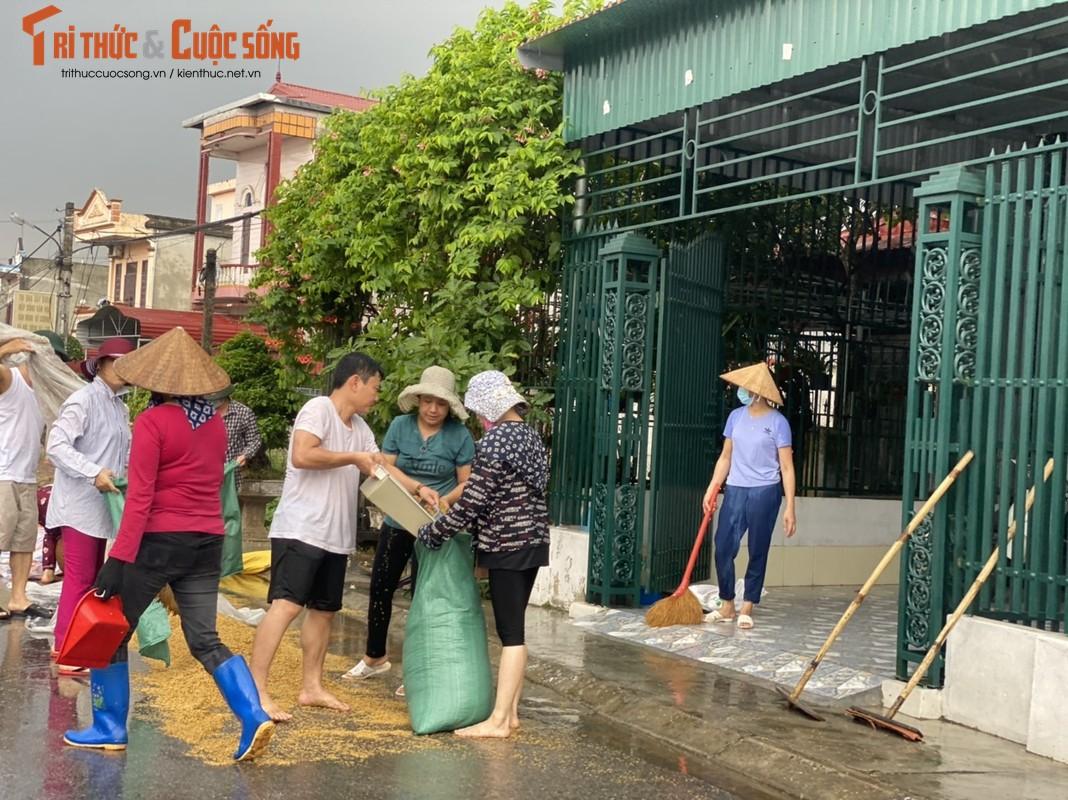 """Nong dan Hai Hau """"khoc rong"""" vi  thoc lua phoi ngoai duong ngap ngua trong mua-Hinh-8"""