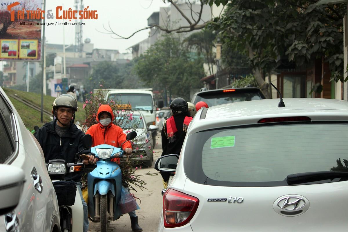 Anh: Cho Quang An tran ngap hoa dao ngay can Tet Nguyen dan 2019-Hinh-12
