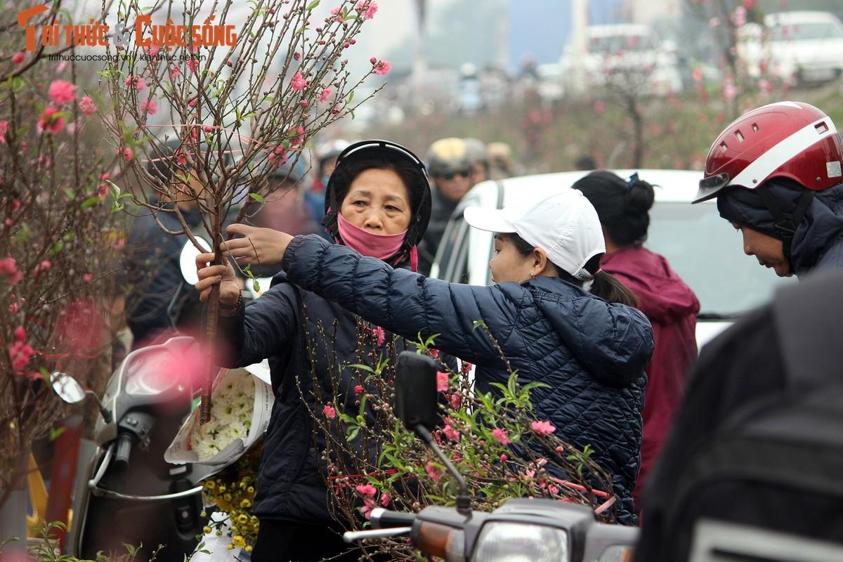 Anh: Cho Quang An tran ngap hoa dao ngay can Tet Nguyen dan 2019-Hinh-3