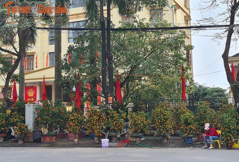 Cho hoa Tet Ha Noi vang chua tung co, tieu thuong ue oai cho khach-Hinh-5