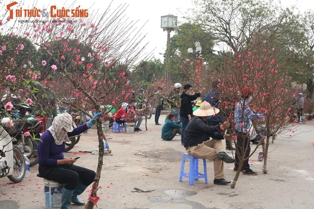 Cho hoa Tet Ha Noi vang chua tung co, tieu thuong ue oai cho khach-Hinh-9