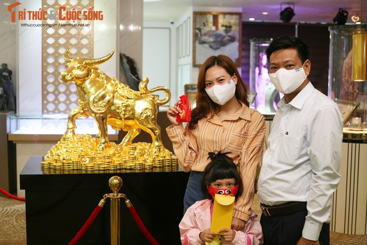 Ha Noi: Doc dao trau vang nguyen khoi nang 20kg don ngay via Than Tai-Hinh-9