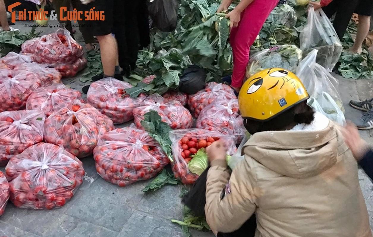 """Nguoi Ha Noi xuyen dem """"giai cuu"""" nong san Hai Duong-Hinh-10"""