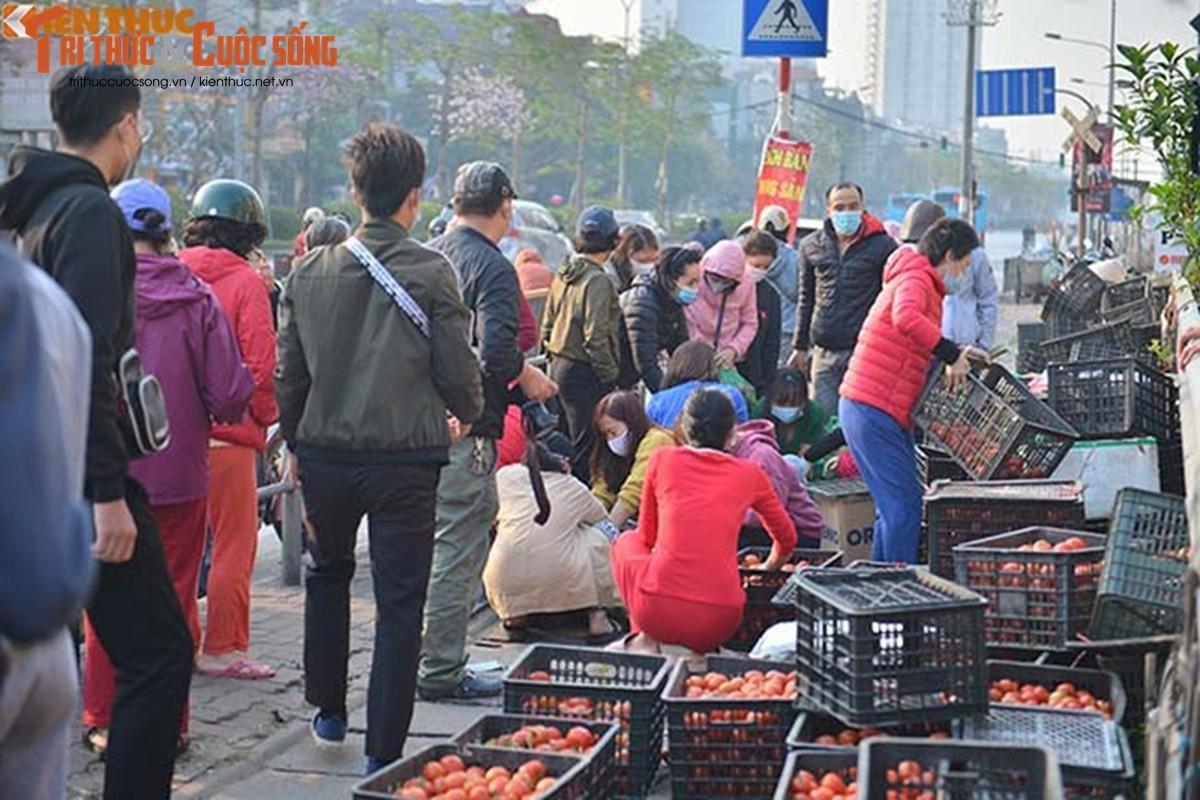 """Nguoi Ha Noi xuyen dem """"giai cuu"""" nong san Hai Duong-Hinh-12"""
